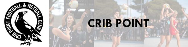 Web Crib Point Netball